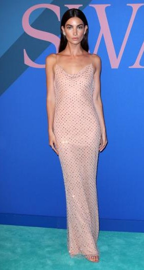 Yay or Nay? Lily Aldridge wearing a Jason Wu sequin dress at the CFDA Awards 2017 - SeenIt