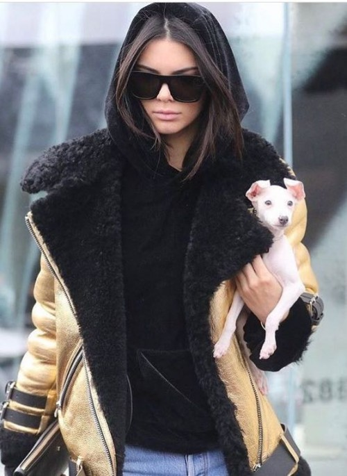 Yay or Nay ?Kendall Jenner in this coat - SeenIt