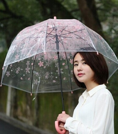 I am looking for a similar transparent floral umbrella as seen with her. - SeenIt