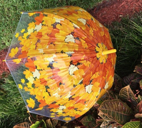 I am looking for this autumn leaves umbrella as seen here. - SeenIt