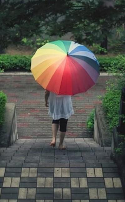 I am looking for a similar multicolour umbrella,help me? - SeenIt