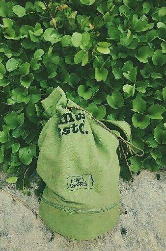 Help me find this green backpack. - SeenIt