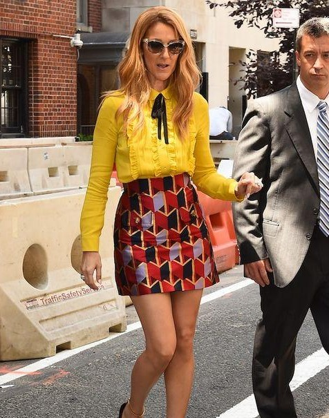 Want a Similar combination of top and skirt which Celine Dion is wearing - SeenIt