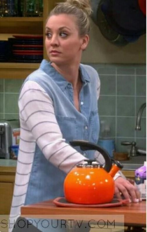 Looking for Penny's Striped Sleeve Denim shirt from The big bang Theory. Thank you. - SeenIt