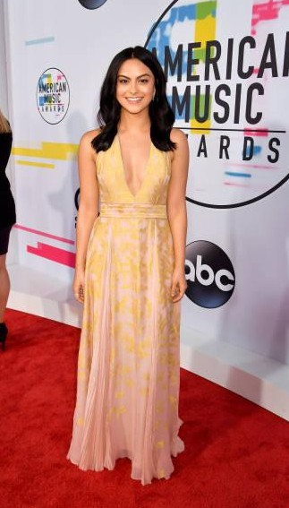 Yay or Nay? Camila Mendes attends the 2017 American Music Awards wearing a nude plunge neck gown - SeenIt