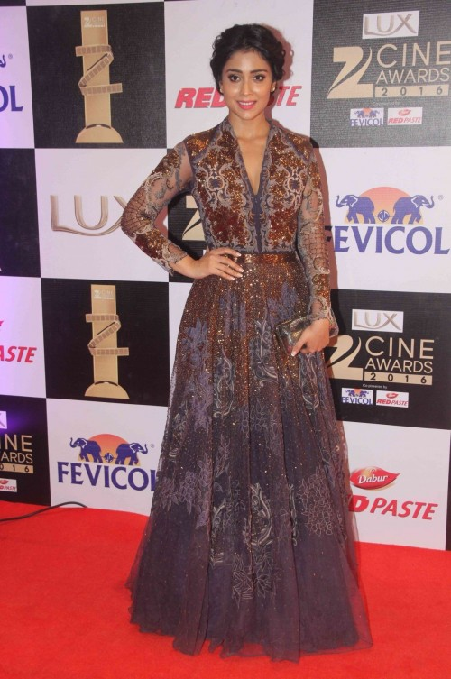 Did this gown byKartikeya work for the red carpet? - SeenIt
