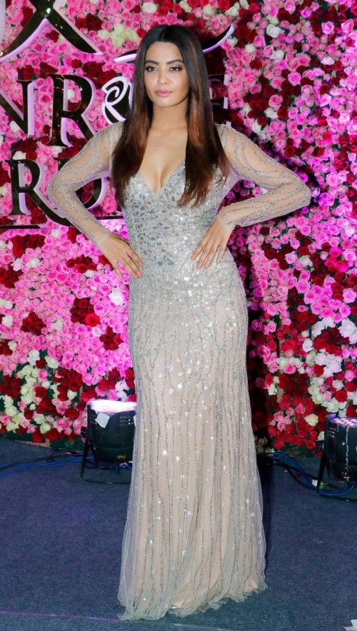 Yay or Nay? Surveen Chawla wearing a silver shimmer embroidered gown at the Lux golden rose awards 2017 - SeenIt