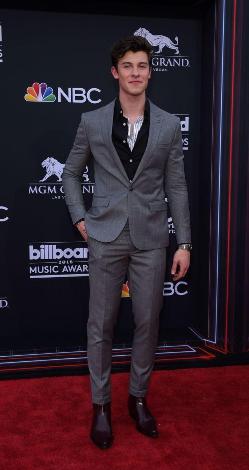 Yay or Nay? Shawn Mendes in this grey plaid suit at Billboards Music Awards 2018 - SeenIt