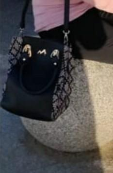 which bag is this - SeenIt