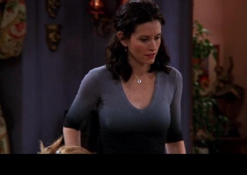This sweater that Monica wears on Friends. Please :) - SeenIt