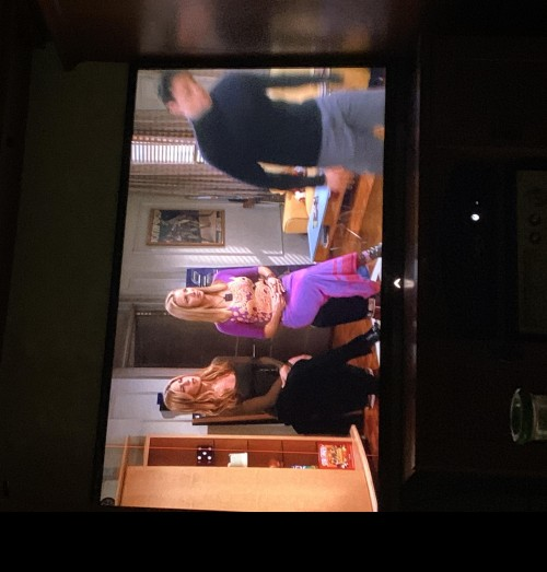 Hello! I am looking for the skirt phoebe is wearing It is from season 7 episode 6 of Friends. It looks to be purple and pink mesh on the top! - SeenIt