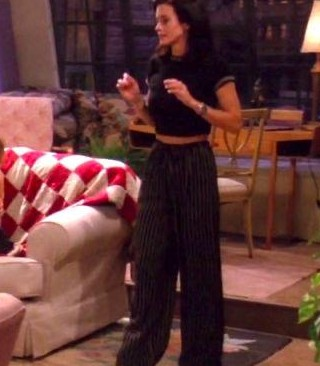 Im looking for this outfit of monica's pants and tshirt! - SeenIt