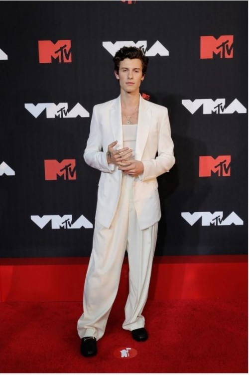 Yay or nay? Shawn Mendes steps out solo on the red carpet without girlfriend Camila Cabello. - SeenIt