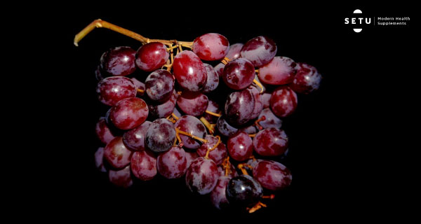 Grape Seed Extract – What's all the hype about?