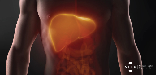 It's High Time India Starts Loving its Liver