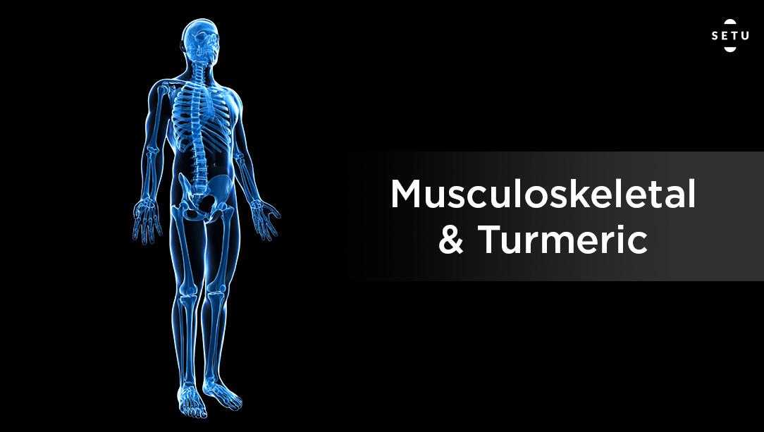 5.  Musculoskeletal & Turmeric