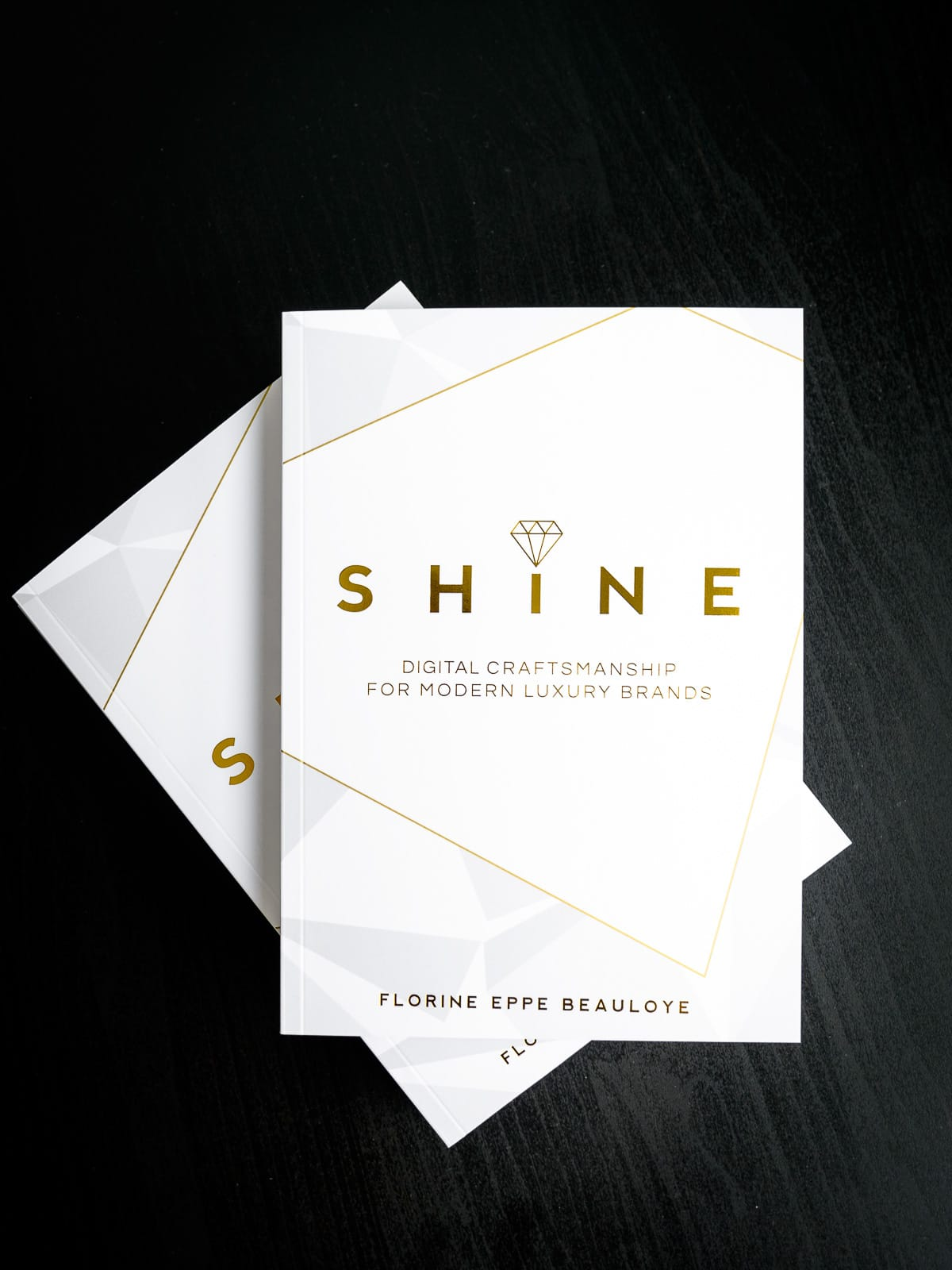 Shine Digital Luxury - Digital Craftsmanship for Modern Luxury Brands - Book Cover