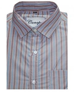 Canopus Brown & Blue Striped Shirt