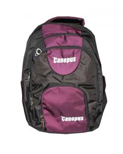 Canopus Executive Laptop Backpack (Magenta)