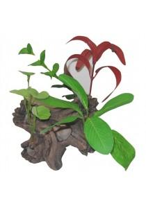 Marina Polyresin Aquarium Ornament - Bog Wood - Small