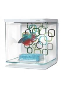 Marina Betta Kit - Geo Bubbles