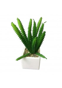 Artificial Succulent with White Porcelain Flower Pot - B