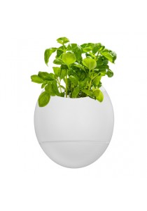Self Watering Herb, Thumbs Up, Life Pod