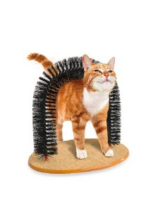 ASOTV Purrfect Arch - Cat Self Groomer and Massage [PUR]