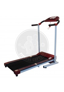 Fitness Foldable and Portable Electric Treadmill