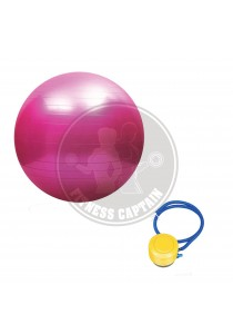 Fitness Gym Ball Anti Burst with Pump (65cm) Pink