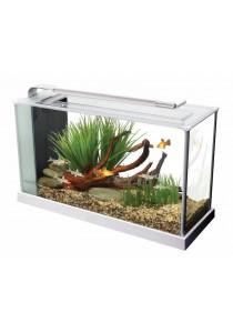 Fluval Spec 19 L (5 US gal) Desktop Glass Aquarium - White