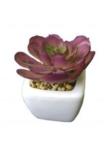 Artificial Succulent With White Porcelain Flower Pot - J