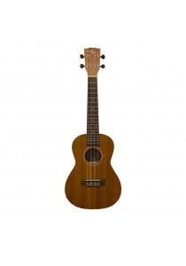 Custom Acoustic UC3