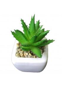 Artificial Succulent With White Porcelain Flower Pot - K