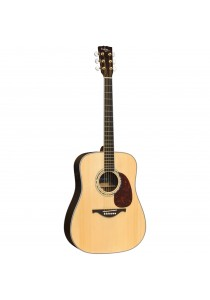 Custom Acoustic FG37E