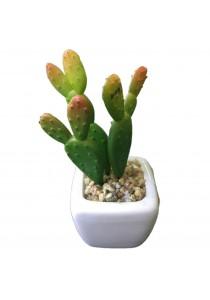 Artificial Succulent With White Porcelain Flower Pot - L