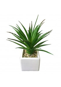 Artificial Succulent with White Porcelain Flower Pot - C