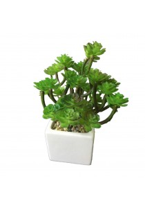 Artificial Succulent with White Porcelain Flower Pot - D
