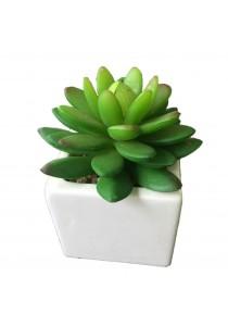 Artificial Succulent with White Porcelain Flower Pot - E