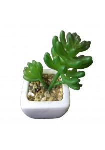 Artificial Succulent With White Porcelain Flower Pot - M