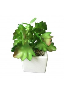 Artificial Succulent with White Porcelain Flower Pot - F