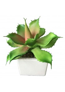 Artificial Succulent with White Porcelain Flower Pot - A
