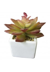 Artificial Succulent with White Porcelain Flower Pot - H