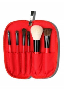 Cerro Qreen Cosmetic Make-Up Brush Set - Red (6 Pcs)