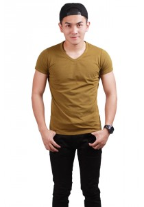 ViQ V Neck T-Shirt (Khaki)