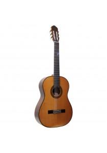 Custom Acoustic CG35