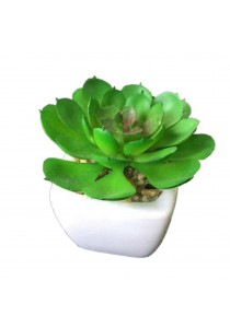 Artificial Succulent With White Porcelain Flower Pot - Q