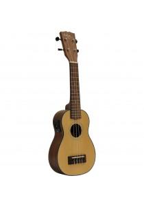 Custom Acoustic US6E
