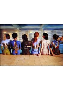Framed Poster: Pink Floyd (Back Catalogue) - GB Eye Poster (61 cm X 91.5 cm)