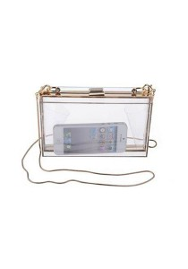 Transparent Acrylic Clutch